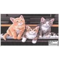 3 Chats en strass  sur pianoToile décorée 40 x 50 cm SUR CADRE BOIS