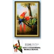 COUPLE ARA  STRASS 54 x 75 cm sur toile roulée