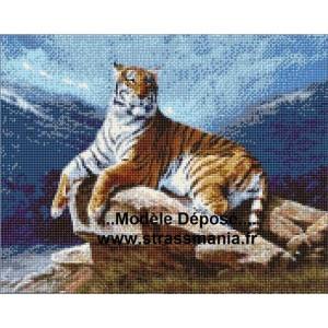 TIGRE COUCHE TOUT STRASS BRILLANTS  40 x 50 cm SUR CADRE BOIS