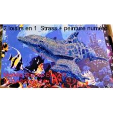 Fond Marin Strass et Peinture Numéro