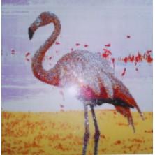 FLAMANT ROSE  60 cm X 60 cm